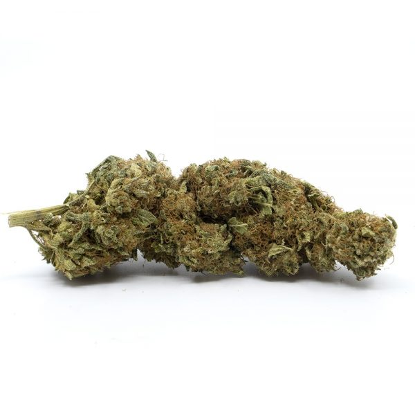 the-cbd-house-new-york-sour-diesel