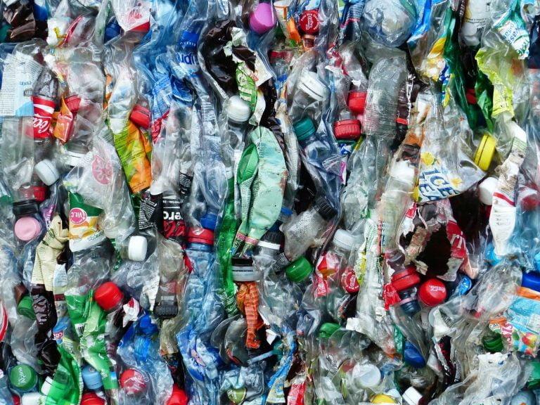 the-cbd-house-chanvre-espoir-bioplastique-Italie